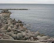 淡路島 漂木海岸
