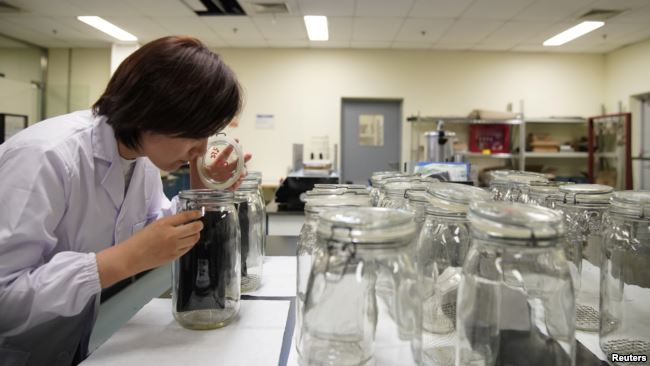 An employee conducts an odor test at the Polymer Laboratory at Ford's research and development center in Nanjing, China, July 12, 2017
