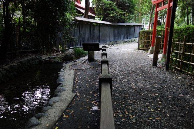 武蔵野の湧水